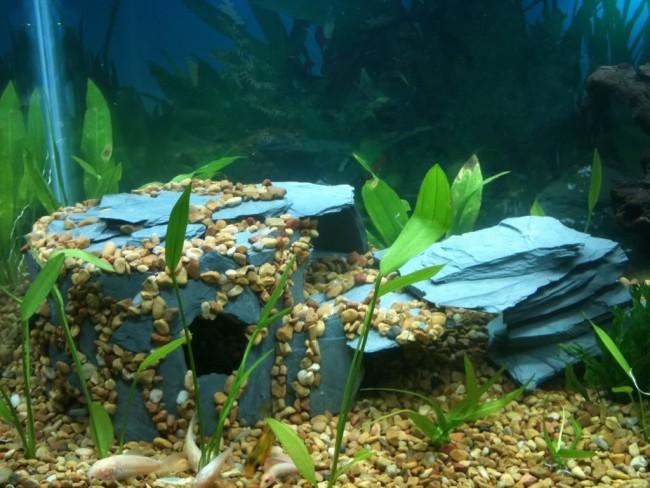 Каменный грот на дне аквариума.