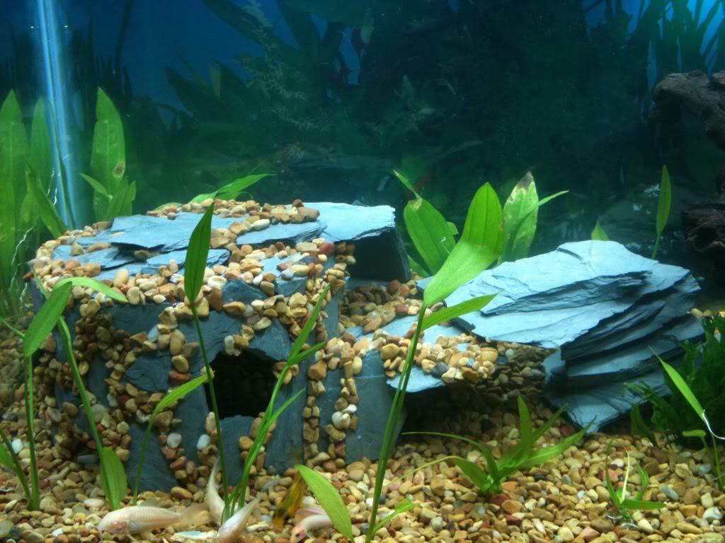 Гроты для аквариумов своими руками 8