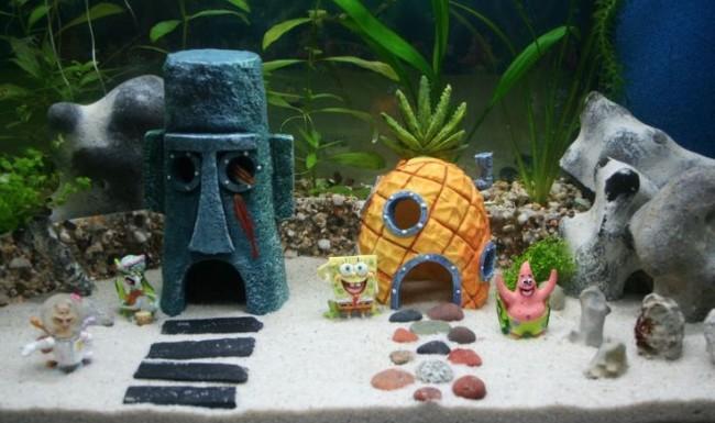 Из глины своими руками в аквариуме