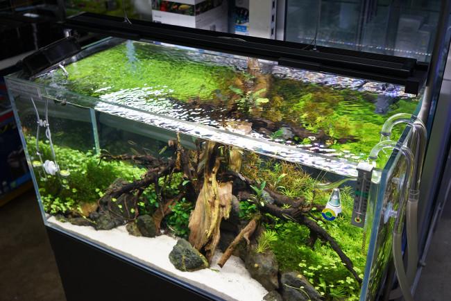 Освещение аквариума вид сверху.