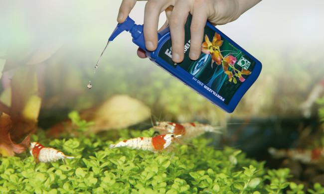 Добавление удобрений в аквариум.