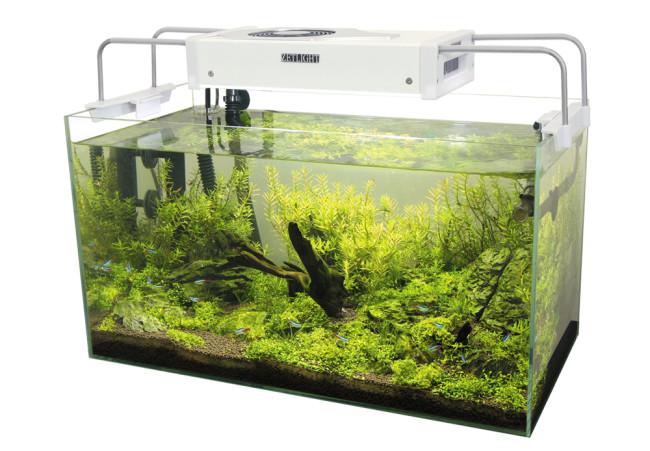 Осветительные приборы для аквариума.