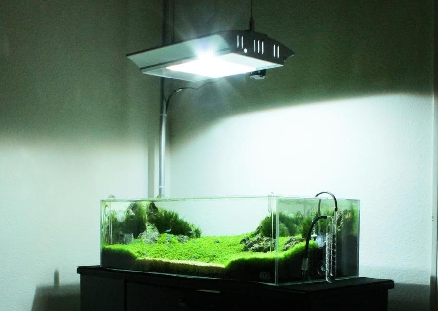 381Освещение аквариума лампами люминесцентными