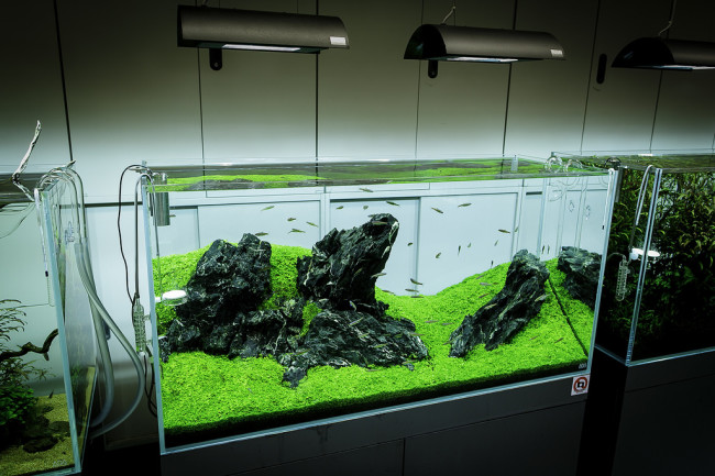 Лампа для аквариума.