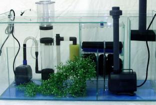 Разновидности аквариумных фильтров.