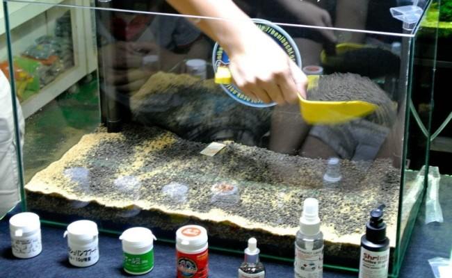 Выкладка грунта в аквариум.