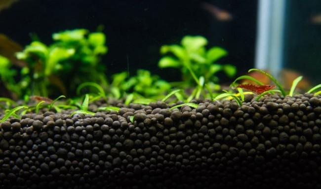 Основа дла аквариума.