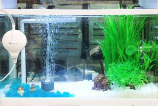 Аэрация в аквариуме.