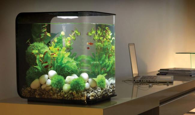 Стильный аквариум.