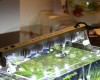 Освещение аквариума на светодиодах.